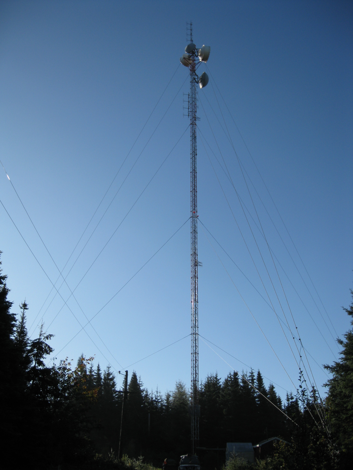 Tower Maintenance Inspections and Reports